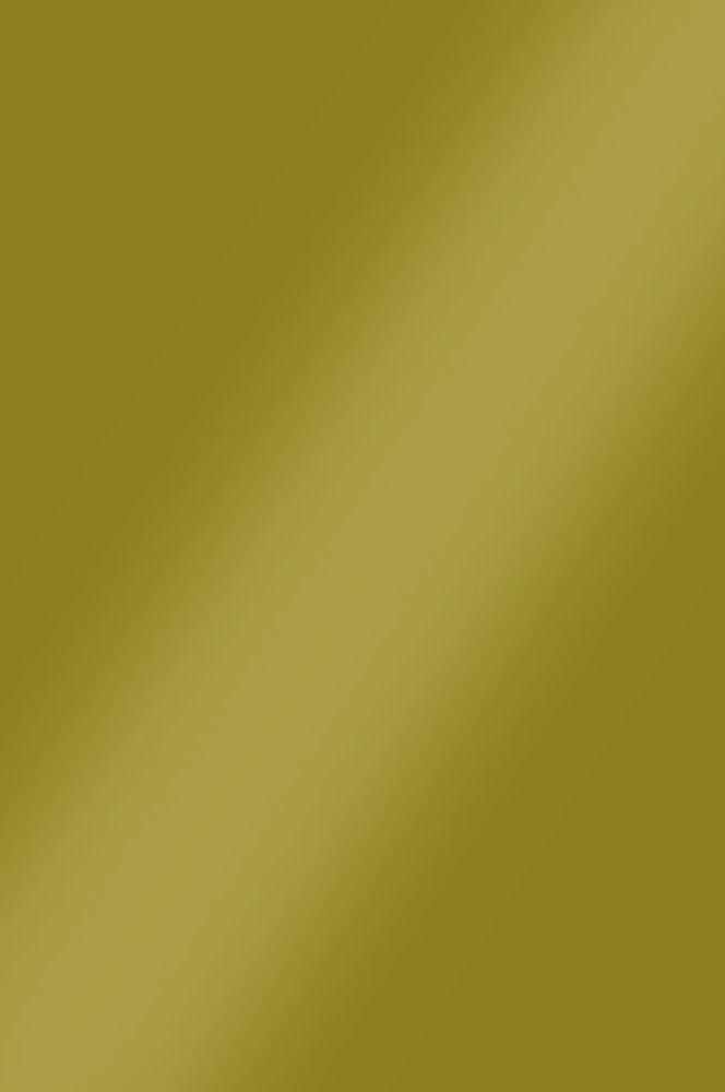 0045 Оливковый