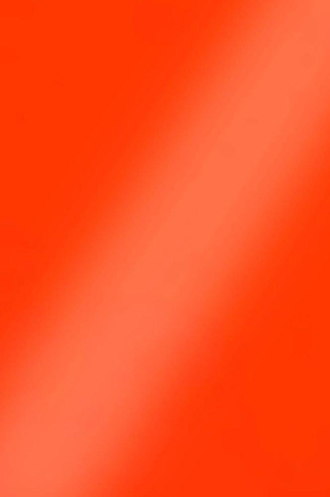 0061 Красный омар