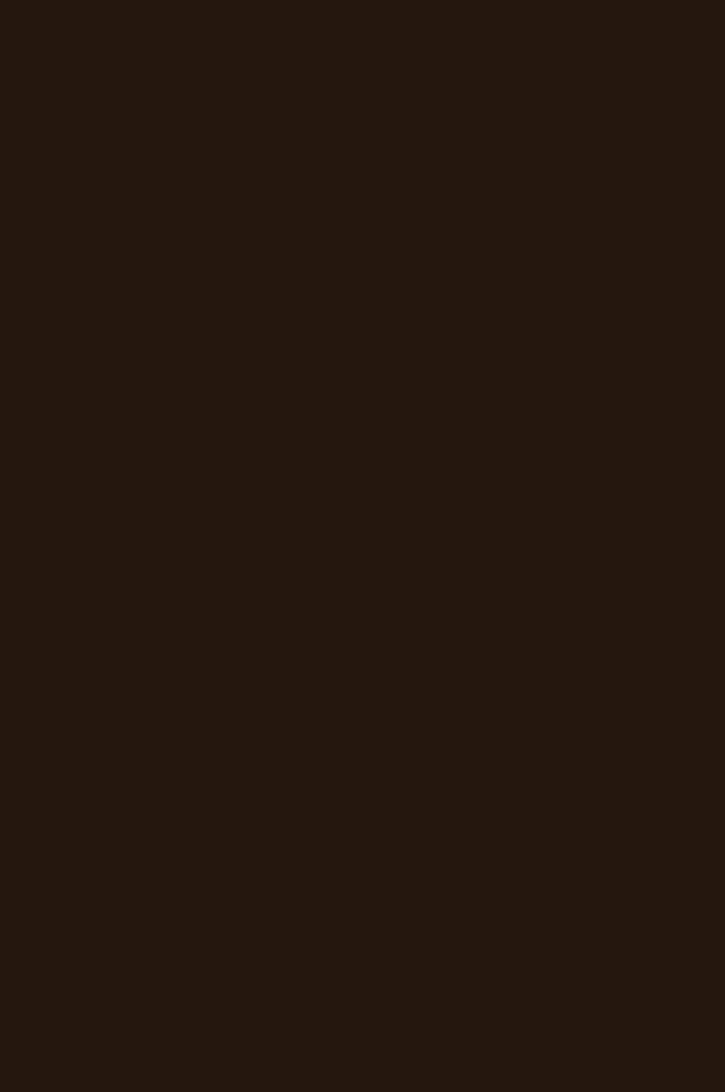 3013 Шоколад