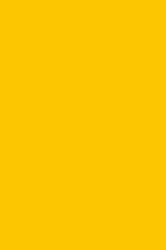 3021 Желтый