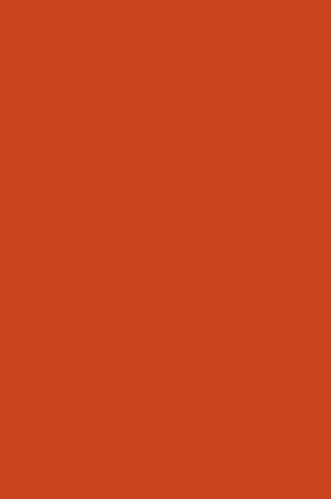3026 Темно-оранжевый