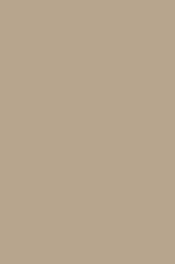 4147 Тёмно-кремовый