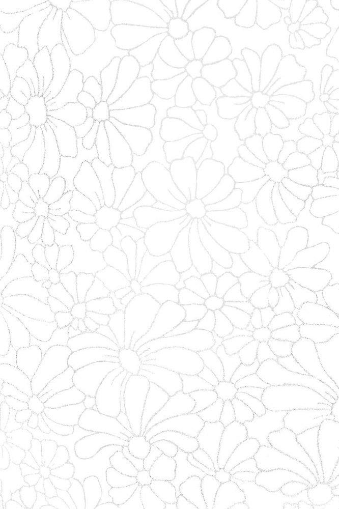 8707 Нигелла белая