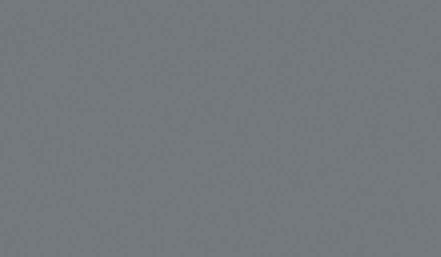 U780 Серый монументальный