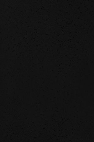 0104 Черный
