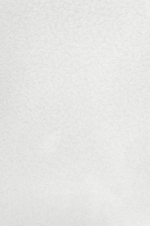1110 Белые васильки