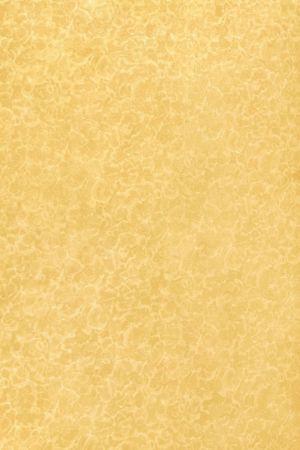 1705 Жёлтая фантазия