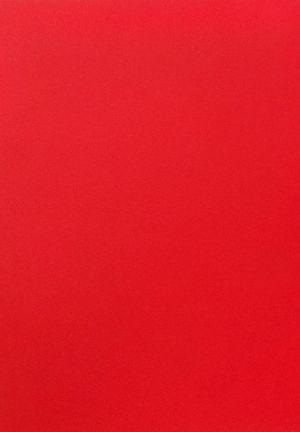 2107 Красный шелк