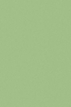 4009 Нежно-зеленый