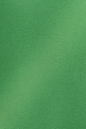 DT0009 Зелёный твид