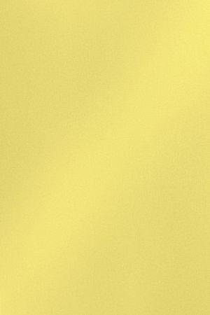 DT0010 Жёлтый твид